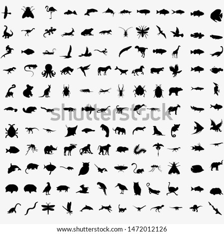 Vector Big Set of Animals Silhouettes. Mammals, Reptiles, Amphibia, Birds, Bats and other.