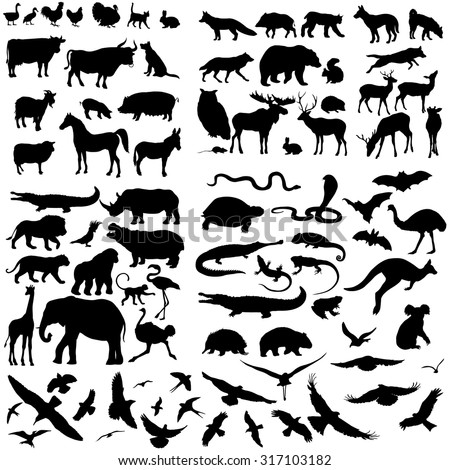 vector big set of animals