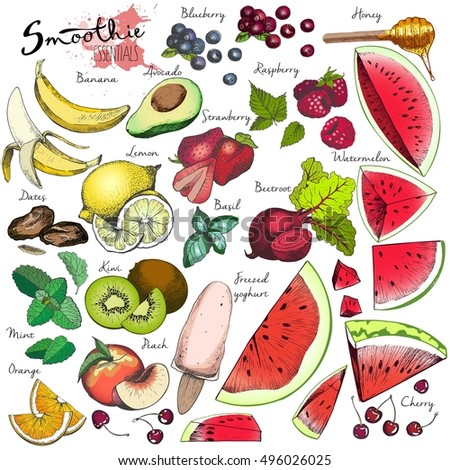 vector big set of fruits and