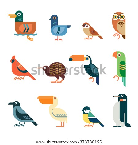 vector bird icons colorful