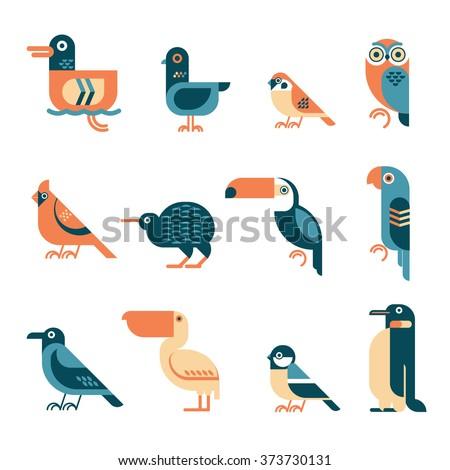 vector bird illustrations set