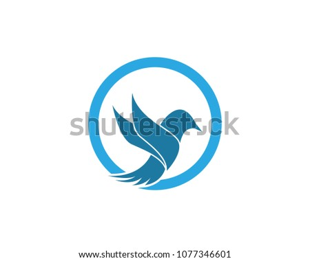 Vector bird logo template