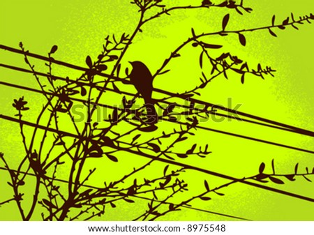 vector bird on branch