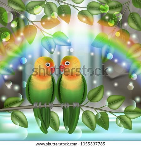 vector  birds  lovebird in a