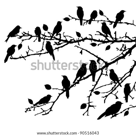 vector birds silhouettes sitting on the branches