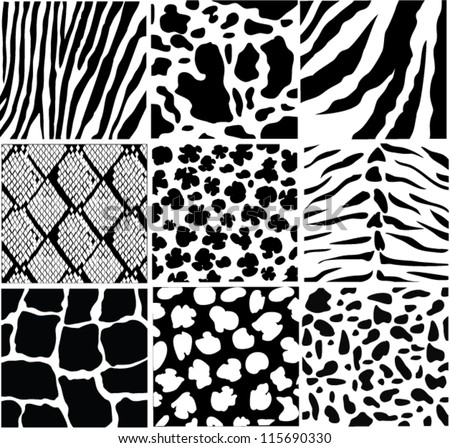 vector black and white skin of different animals