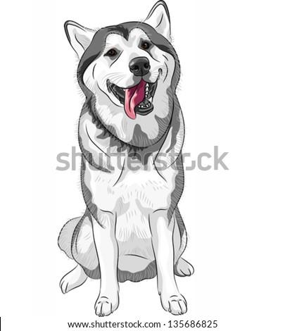 vector black and white sled dog