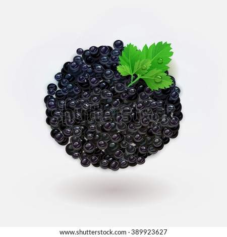 vector black caviar with leaves