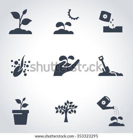 Vector black plant growing icon set.