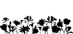 vector black silhoueete of flowers and plants, floral composition, hand drawn illustration