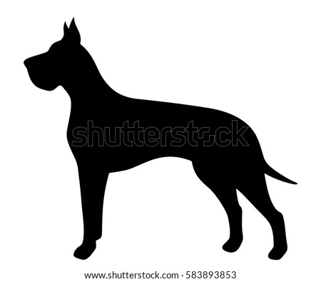 Vector black silhouette of a Great Dane dog isolated on a white background.