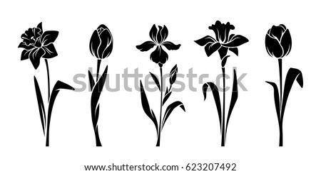 Vector black silhouettes of spring flowers (tulips, narcissus and iris) isolated on a white background.