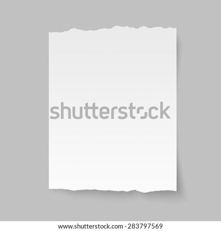 Vector blank sheet of torn paper.