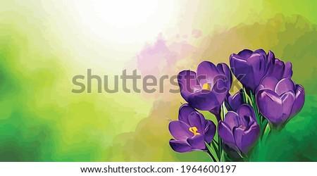 vector blooming macro purple