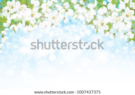 vector blossoming branches of