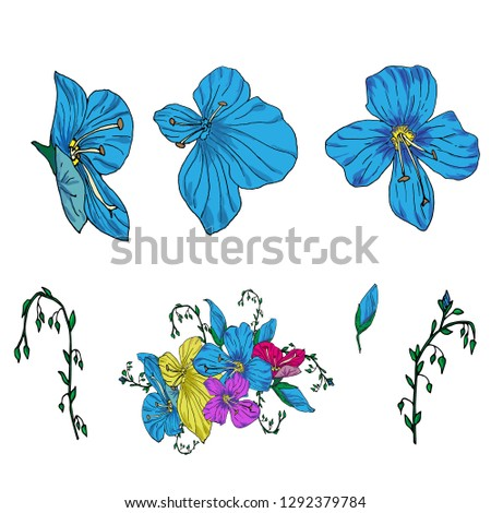 Vector blue flowers. Isolated flowers on white background. Template for floral arrangements. Eps 10 vektor.