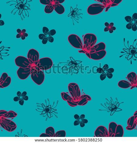vector blue pink cherry flowers