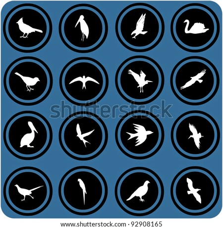 vector blue  signs. silhouettes of birds. birrds icons