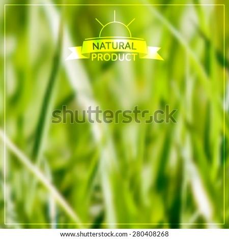 vector blurred grass background