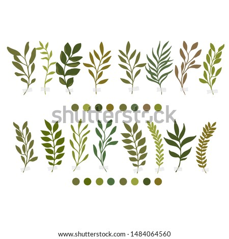 Vector botanic illustrations. Botanical clipart. Set of Green branches. Floral Herb Design elements. Perfect for wedding invitations, greeting cards, blogs, posters and more