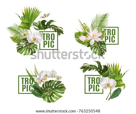 Vector botanical banners set with tropical leaves orchid flowers on white. Design for cosmetics, spa, health care products, travel company. Can be used as summer background