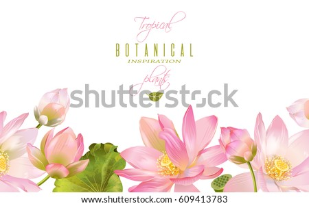 Vector botanical horizontal banner with pink lotus flowers. Design for natural cosmetics, health care and products, yoga center. Can be used as greeting card or wedding invitation. With place for text