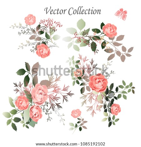 Vector.  Botanical illustration. The composition of pink roses, flowers, colorful leaves, wild and garden herbs. A set of bouquets, twigs, elements.  Collection of floral arrangements.