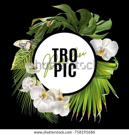 vector botanical round banner