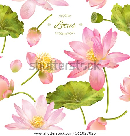 vector botanical seamless