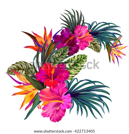 vector bouquet with tropical flowers. Retro Hawaiian style floral arrangement, with beautiful hibiscus, palm, bird of paradise. Amazing vector illustrations, vintage style. Editable graphic elements.