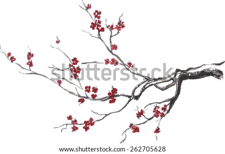 vector branch of cherry blossom
