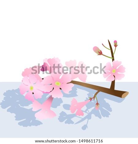 vector branch pink trumpet tree