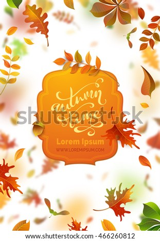 vector bright autumn leaves