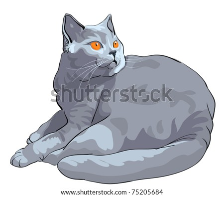 vector British Shorthair blue cat with orange eyes lies and looks on a white background