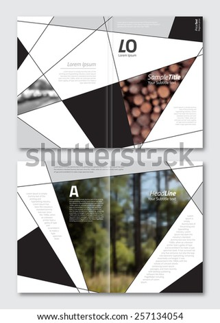 Vector brochure design template. Business background layout with geometric elements for magazine, cover design. A4 size.