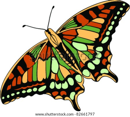 stylish butterfly design set of multicolored butterfly find similar