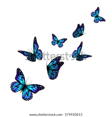 vector butterfly with hearts on