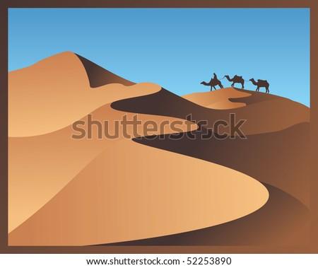 vector camels in desert