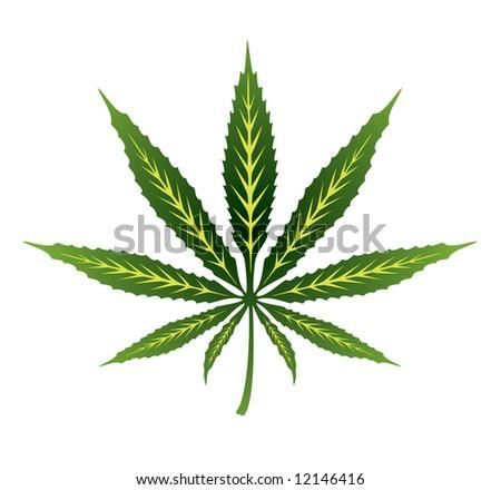 Vector cannabis leaf