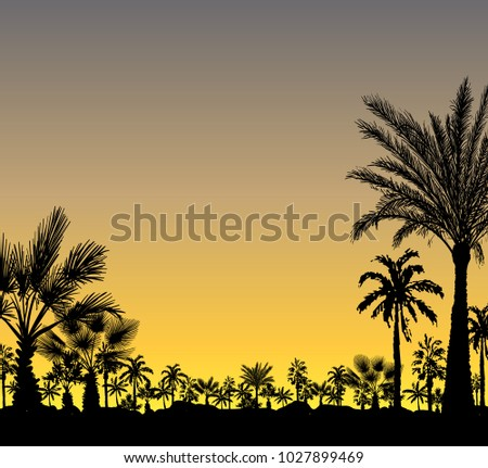 vector card with realistic palm