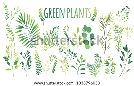 vector cartoon abstract green