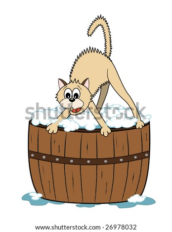 vector cartoon cat scared to have a bath