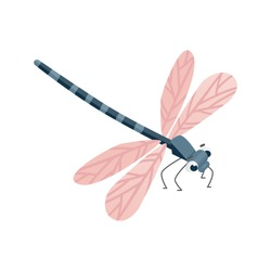 Vector cartoon Dragonfly character. Funny dragon fly icon.