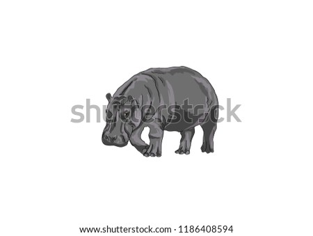 Vector cartoon hippopotamus
