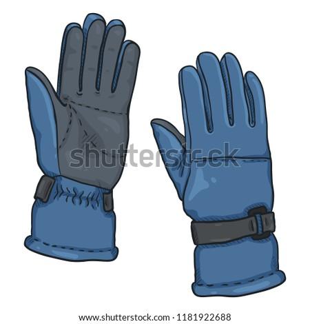 Vector Cartoon illustration - Blue Gloves for Ski