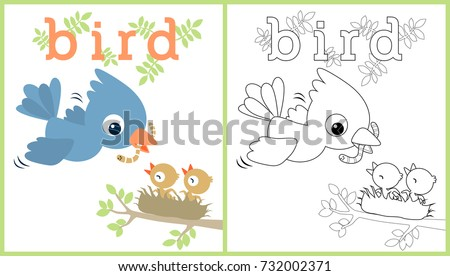 vector cartoon illustration of birds family, coloring book or page stock photo
