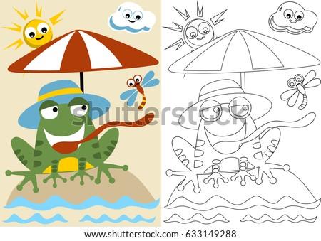 vector cartoon of frog in the