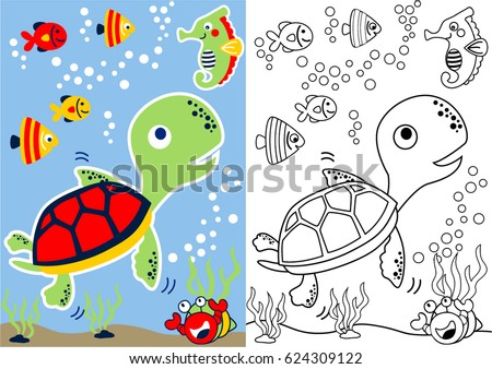 vector cartoon of turtle and