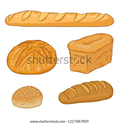 Vector Cartoon Set of Bread Loaves and Baguettes