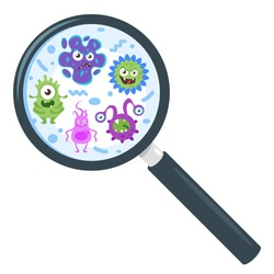 Vector cartoon style illustration of colorful funny bacteria characters through magnifying glass. Good and bad flora microbes. Isolated on white background.